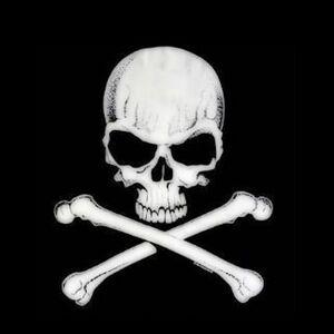 Skull and crossbones 2