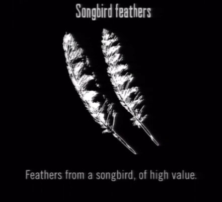 File:Animals Songbird Feathers.jpg