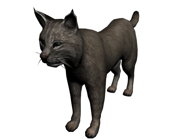 File:Lince2.png