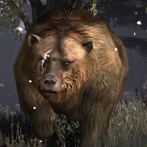 File:Rdr brumas bear.jpg