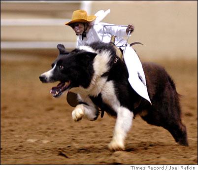 Cowboy3b