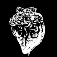 File:Corazonundead1.png
