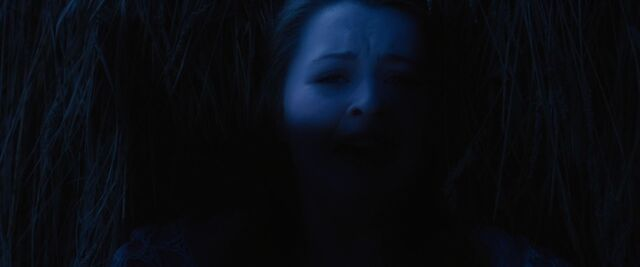 File:Red-Riding-Hood-BluRay-2011-Film-red-riding-hood-23980388-1920-800.jpg