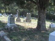 Newton graveyard