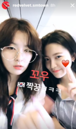 Seulgi and Yeri RV Insta Story 2