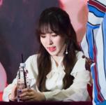 Wendy Rookie Fan Meeting