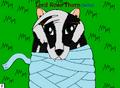 Thumbnail for version as of 00:22, September 26, 2011
