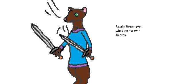 File:Razzin wielding her swords.jpg
