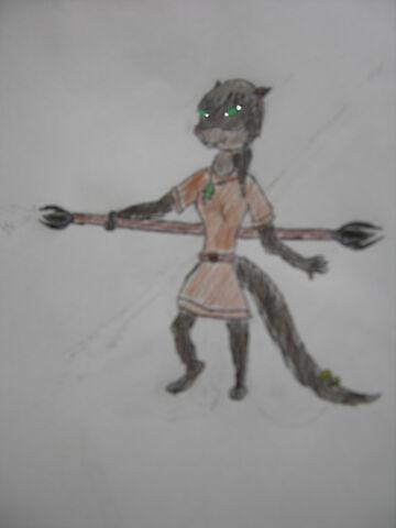 File:For otterwarrior .jpg