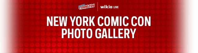 File:W-NYCC Blog Header 748x200 8e0000.png