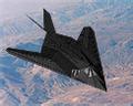American Nighthawk Icon.png