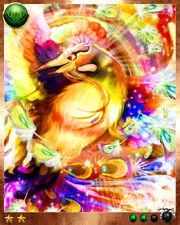 Rainbow Bird4
