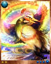 Rainbow Bird3