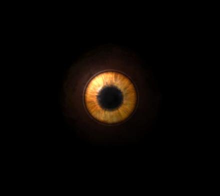 File:EyeOfWolfos.jpg