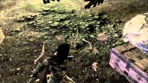 Biggoron Sword - Relics of Hyrule Video Guide