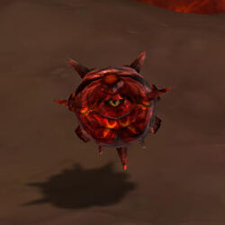 Spiked magma stone crop