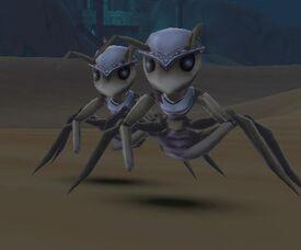 Desert Ant