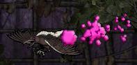 Stinkbird