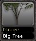 Nature Big Tree