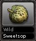 Wild Sweetsop