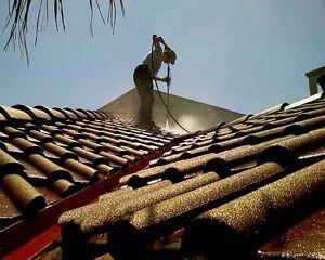 Shingle-roof-maintenance
