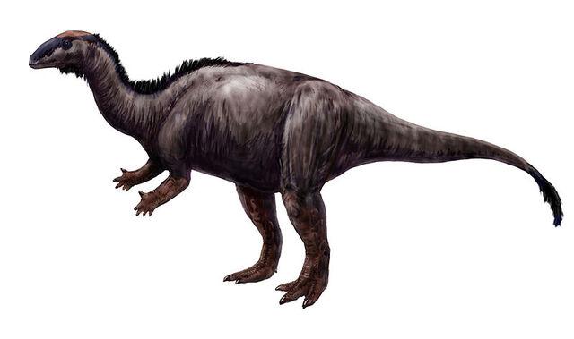 File:Camptosaurus.jpg