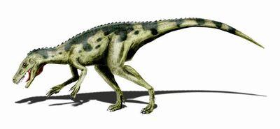 Herrerasaurus BW