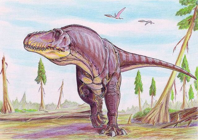File:800px-TarbosaurusDB.jpg