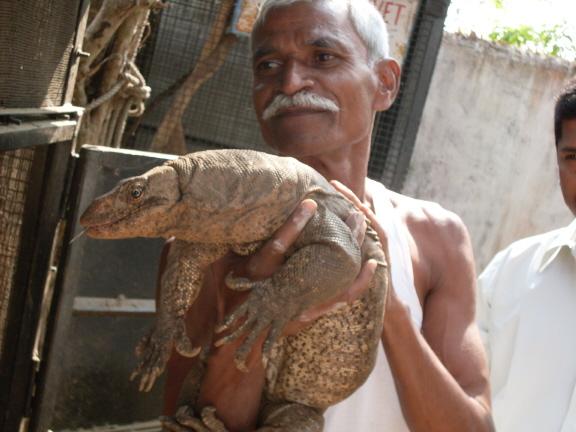 File:Dada Panchal with monitor lizard 6 x 4.jpg