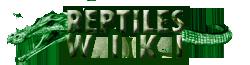 File:Reptiles.png