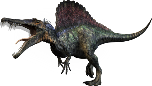 File:Dino-large spino.png