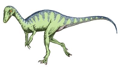 Eoraptor sketch