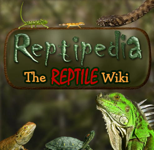 File:Reptiwiki.png