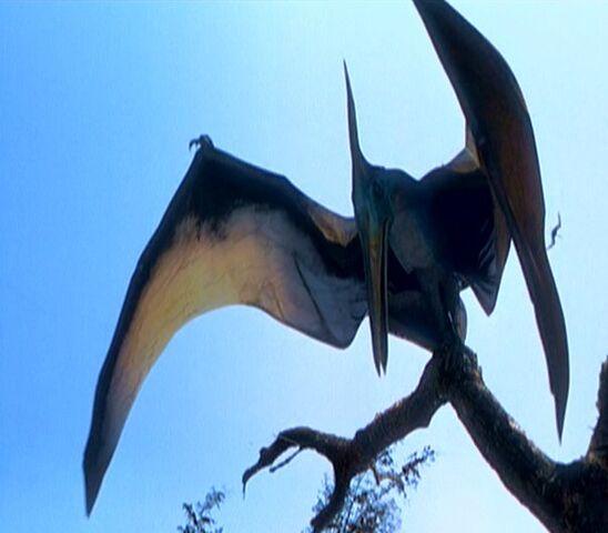File:Pteranodon jplw.jpg