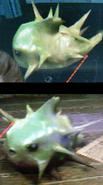 Blowfish-2