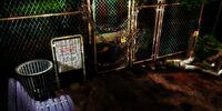 Raccoon Park/Woodland path