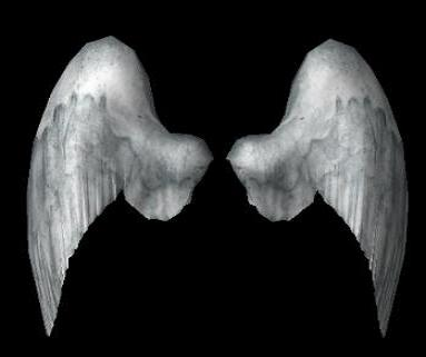 Datei:Angel wings.jpg