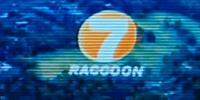 Raccoon 7
