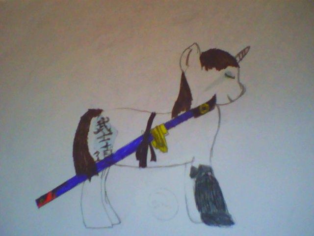File:Fullmetal Pony.jpg
