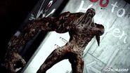 Resident-evil-the-darkside-chronicles-20090710025330402-2