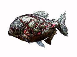 Piranha ene.jpg