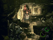 Labyrinth in-game (Danskyl7 RE5) (3)