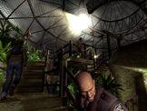 Terrarium dome