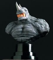 Rhino bust