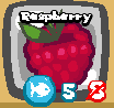 File:Raspberry temporary.png