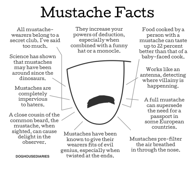 Mustache-facts-640x556