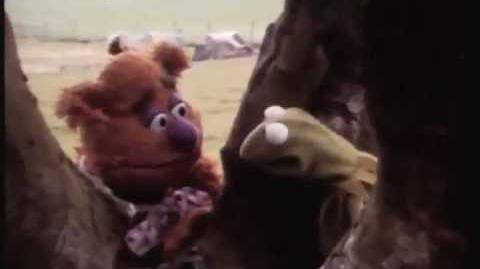 Muppet Movie 1979 camera test The banter is so hilariously improvised