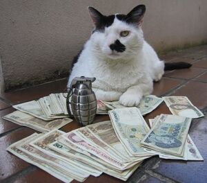 Feline Mafiosa