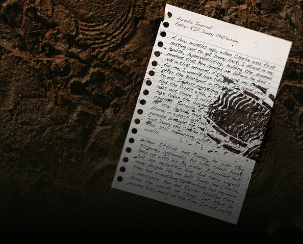 File:111-aarons-journal.jpg