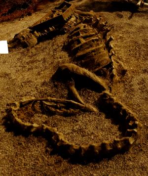 Skeleton on Not-Furya